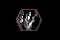 917591699_Grandrexavatar(1).png.6cd409e5170535259b91188084addfc3.png