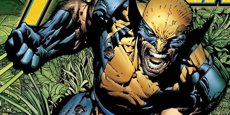 Wolverine-New-Avengers-David-FInch.jpg.05a234ef0e9ffa462a59a8613948c40c.jpg