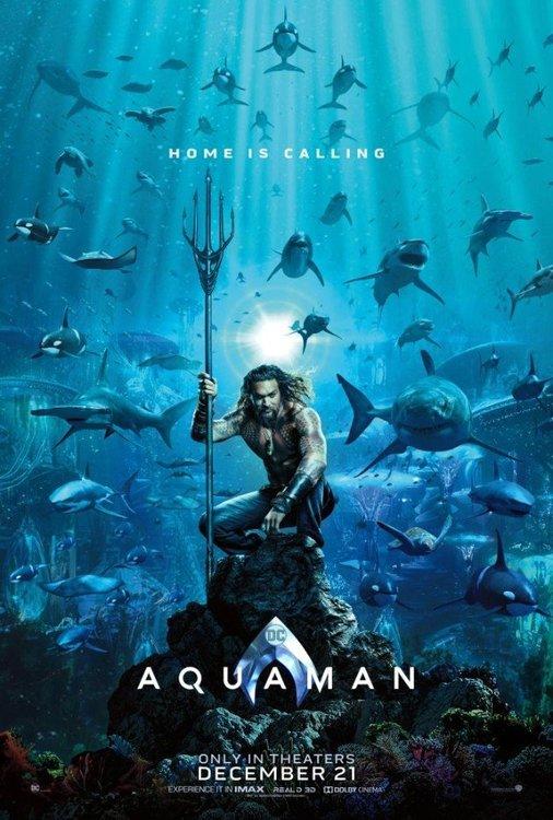 1174951872_2018.12-Aquaman-Movie-Poster-Jason-Momoa.thumb.jpg.a0f47fc2a2dba7013706d0478a85026d.jpg