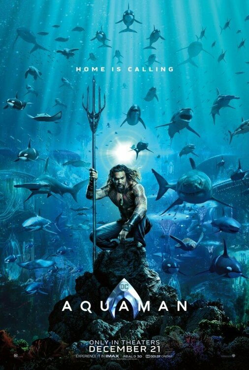 1390156897_2018.12-Aquaman-Movie-Poster-Jason-Momoa.thumb.jpg.ada519f815840b6879994644f7624a9e.jpg